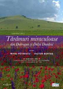 Afis - Taramuri miraculoase - A2 - Pt. Mail